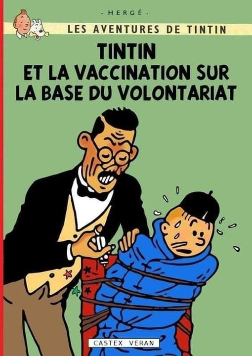 Tintin_Vaccination_Volontaire